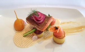 Wild Steelhead Salmon