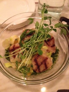 Marinated Scallop and Endive Salad