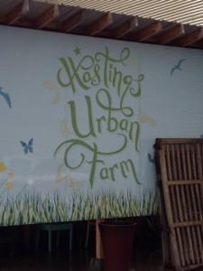 hastings urban farm 1