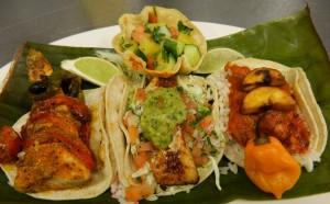 Trio of Fish Tacos Mexico Lindo