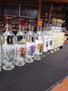 tequila expo 1