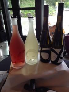 8th Generation Vineyards