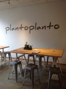 plantoplanto 1