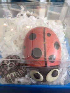 Chocolate Lady Bugs