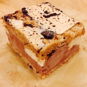 Shoppe Ice Cream S'more