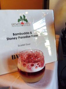 growing-chefs-farm-fork-2016-4
