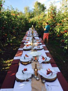 taves-farms-dinner-2016-2